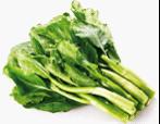 有机芥蓝 Chinese kale