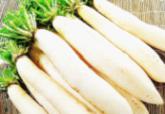 有机白萝Long white radish