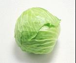 有机绿甘蓝 Green cabbage