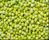 有机青豌豆 Green peas