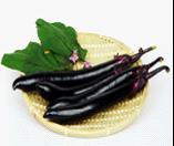 有机茄子Eggplant